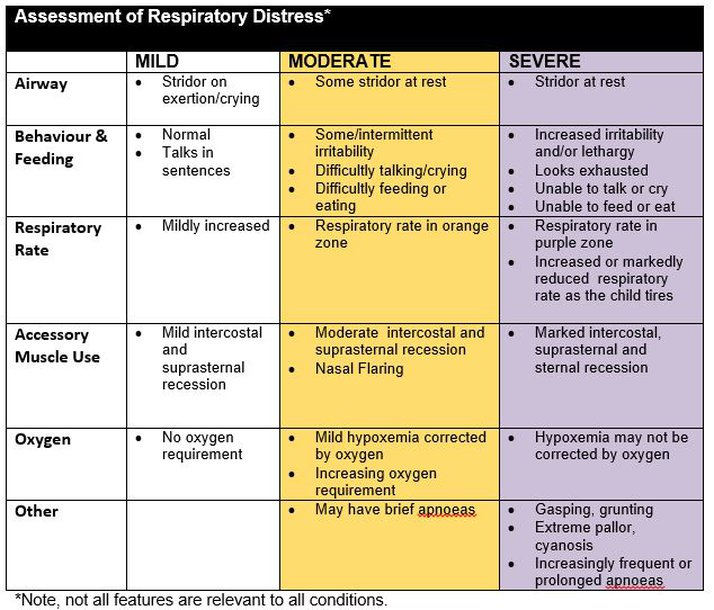 A Computer-Aided Audit System for Respiratory Therapy ... |Respiratory Assessment Template